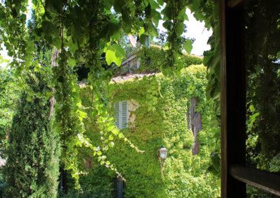 finestra cipressi